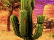distruggi cactus nel deserto fortnite