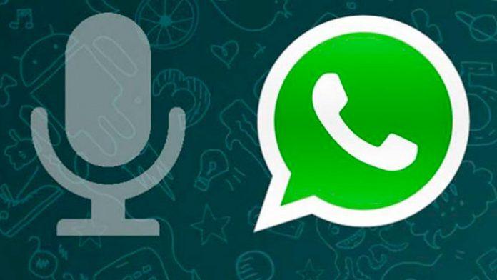 whatsapp note vocali