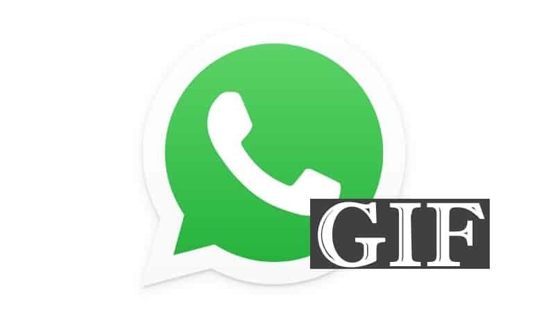 whatsapp gif -2