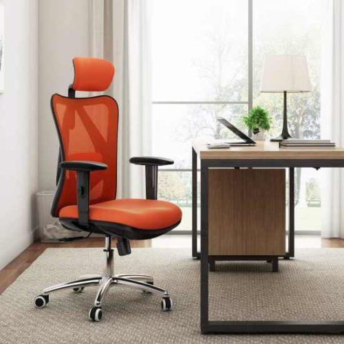 migliori sedie ergoniche per smartworking-sihoo