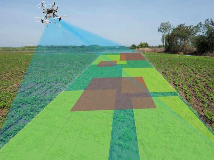 droni in agricoltura biologica